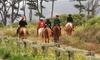 Sea Horse Ranch - San Mateo Highlands: $49 for a 90-Minute Trail and Beach Horseback Ride at Sea Horse Ranch ($80 Value)