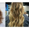 Up to 47% Off French Balayage Highlights or Cut at Hair By Maria