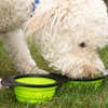 Evelots Silicone Collapsing Pet Bowl with Bonus Bowl and Clip