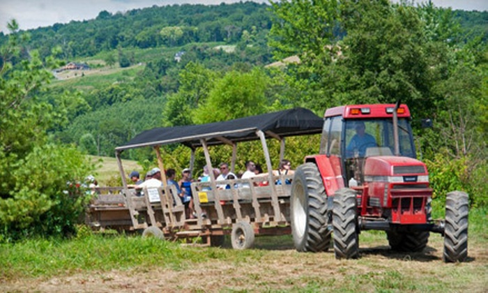 Great Country Farms - East Bluemont: Weekday or Weekend Visit with Souvenir Animal-Feed Cups for Two or Four at Great Country Farms (Up to 53% Off)