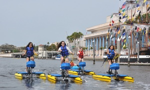 Tampa Bay Water Bike Co.: Sunset or Daytime Water Bike Rentals at Tampa Bay Water Bike Co. (Up to 44% Off). Six Options Available.