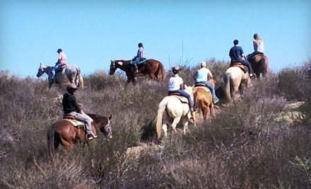 75-Minute Guided Horseback Trail Ride for Two or Four with Wine Tastings from Green Acres Ranch (57% Off)