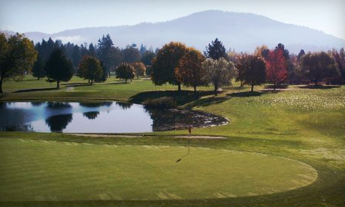 Avondale Golf Course - Hayden Lake: $189 for Three Rounds of Golf and 10 Small Group Clinics at Avondale Golf Course in Hayden Lake (Up to $910.74 Value)
