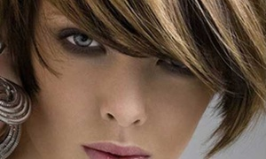 Salon Bronzino: Haircut with Shampoo and Style from Salon Bronzino & Tan (60% Off)