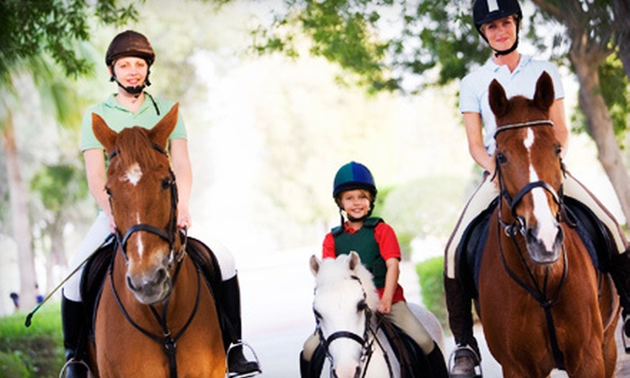 Goslin-Nix Training Center - Magnolia: Two or Four 30-Minute Private Horseback-Riding Lessons at Goslin-Nix Training Center (Up to 70% Off)