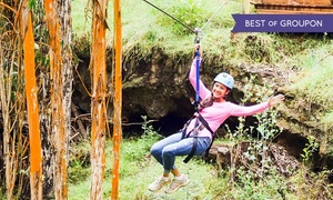 Skyline Eco Adventures: Haleakala Maui Zipline Tour for One, Two, or Four at Skyline Eco-Adventures (Up to 25% Off)