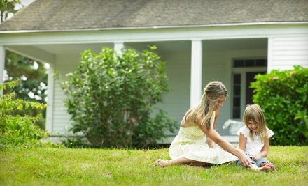 One 1-Month Mosquito Treatment for up to 1-Acre (a $69 value) - Triad Mosquito Control in