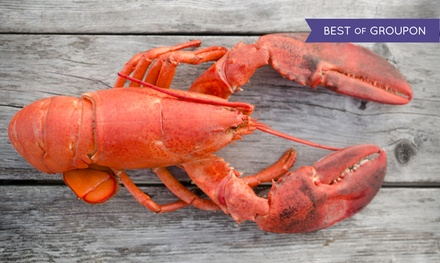 Live Maine Lobsters or Lobster Tails from GetMaineLobster.com (Up to 57% Off). Four Options Available.