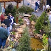 Up to Half Off Home-and-Garden Show