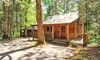 Dancing Bear Lodge - Townsend, TN: Stay at Dancing Bear Cabins in Townsend, TN, with Dates into March