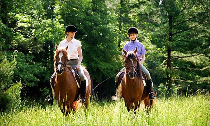 Fancy Hill Farm - Palmyra: One or Three Horseback-Riding or Horsemanship Lessons at Fancy Hill Farm, LLC (Half Off)