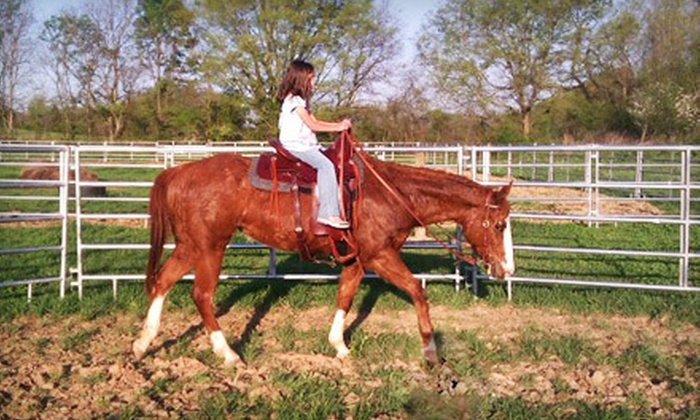 Barnfly Stables and Tack - 9: Private Horseback-Riding Lesson for Two or $15 for $30 Worth of Horse Tack at Barnfly Stables in Springfield
