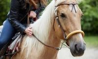 3 o 5 lezioni di equitazione per adulti e bambini anche disabili da A Cavallo Con Te (sconto fino a 80%)