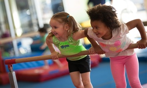 The Little Gym: Children's Classes and Open-Play Sessions at The Little Gym (76% Off). Four Options Available.