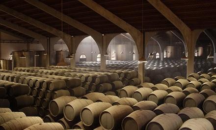 Visita de las Bodegas Marqués del Real Tesoro y cata de sus vinos para dos o cuatro personas desde 12,95 €