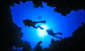 GRUPPO NASIM: Corso di sub Scuba Diver con uscita in barca e immersione da 24,90 €