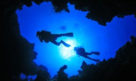 Corso di sub Scuba Diver con uscita in barca e immersione da 24,90 €