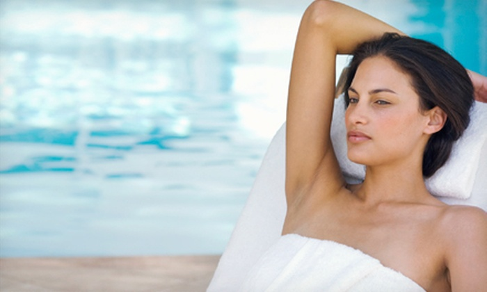 Hair 1 and Spa 2 - South Gate East: $199 for Nine Laser Hair-Removal Treatments for the Bikini Area and Underarms at Hair 1 and Spa 2 ($3,600 Value)