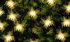 Guirlande de 10 lumières LED papillon