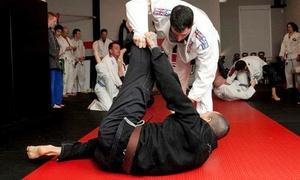 Foundry Jiu Jitsu Academy: 5 or 10 Drop-In Brazilian Jiu Jitsu Classes at Foundry Jiu Jitsu Academy (Up to 77% Off)