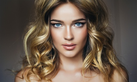 Full Highlights, Toner, and Style or Haircut, Lowlights, and Highlights at Eliza Beauty Salon (50% Off)