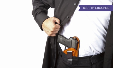 $49.99 for a Wisconsin Concealed Carry Weapons (CCW) License Course at Felton Training Group ($170 Value)