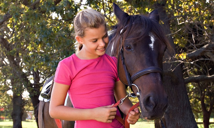 Gallop Again - Gallop Again: One or Three Children's Horseback-Riding Lessons at Gallop Again in Harrison (Up to 56% Off)