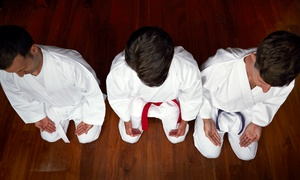 MuDo Integrated Martial Art: 10 or 20 Martial-Arts Classes for Kids or Adults at MuDo Integrated Martial Art (Up to 86% Off)