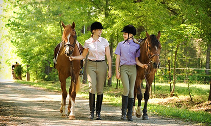 White Horse Equestrian Deals 2011-2013 - Streetsboro: One or Three Riding Lessons or Pony Hour Visits for One or Two Kids at White Horse Equestrian (Up to 52% Off)