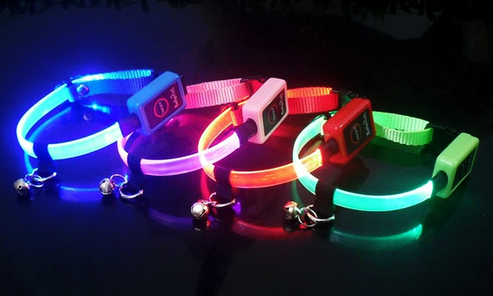 LED Cat Collar: LED Cat Collar. Multiple Colors Available. Free Returns.