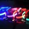 LED Cat Collar