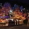 34% Off Electric Safari at Cheyenne Mountain Zoo