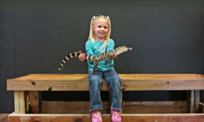The Alligator Attraction - Isle of Capri: $15 for Family Visit for Up to Six with Alligator Holding and Feeding at The Alligator Attraction ($30 Value)