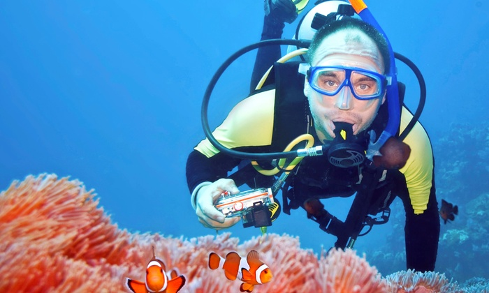 Abyss Scuba & Travel - Abyss Scuba & Travel: Open-Water PADI Certification Course or Confined-Water Scuba Course at Abyss Scuba & Travel (Up to 52% Off)