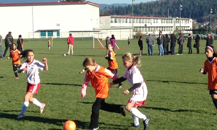 One-Week Soccer-Training Clinic at Soccerpotential.com (65% Off)