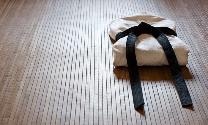 Aikido of Gainesville Inc - Gainesville: One or Two Months of Aikido Classes at Aikido of Gainesville Inc (Up to 66% Off)