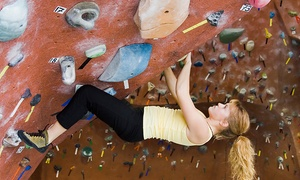 Centre d'Escalade Vertical: 1, 2, or 12 Months of Unlimited Climbing and Top-Roping Course at the Centre d'Escalade Vertical (Up to 79% Off)