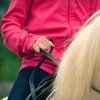 Up to 55% Off Horseback-Riding Lessons in Osteen