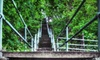 Pittsburgh StepTrek 2012 - Southside Park: Pittsburgh StepTrek 2012 Self-Guided Tour for Two or Four (Up to 57% Off)