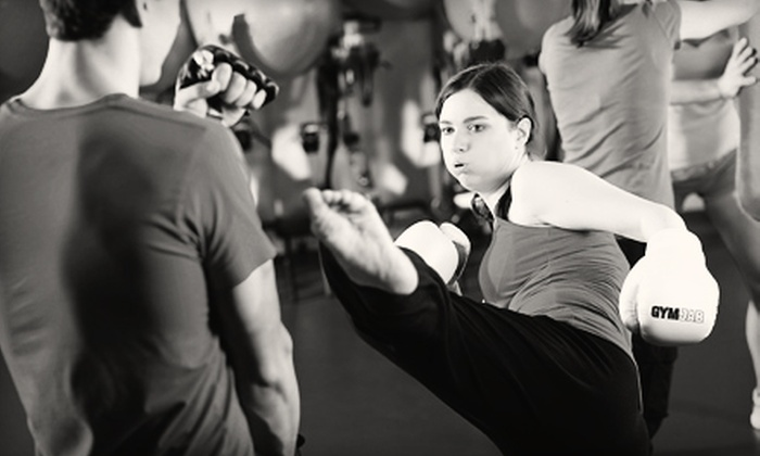 Imperial Martial Arts and Fitness Center - Sunshine Parkway: One or Two Months of Combat Fitness Classes at Imperial Martial Arts and Fitness Center (Up to 80% Off)