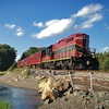 Cape Cod Central Railroad – Up to 39% Off