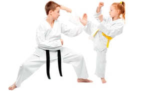 Cho's Martial Arts: 1 Private Lesson and 1 Month of Unlimited Tae Kwon Do or Kickboxing Classes for 1 or 2 (Up to 86% Off)
