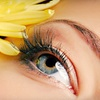 Up to 60% Off Eyelash Extensions
