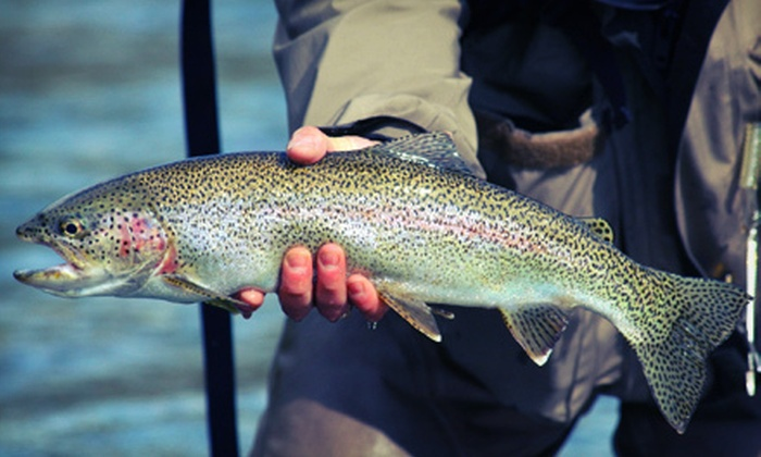 Steve Roberts Guide Service - Multiple Locations: $99 for an Eight-Hour Salmon-Fishing Adventure from Steve Roberts Guide Service ($200 Value)