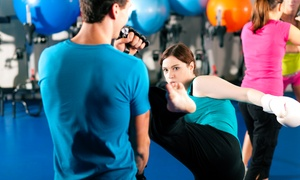 Hallandale Kickboxing & MMA: 5 or 10 Kickboxing Classes at Hallandale Kickboxing & MMA (Up to 86% Off)