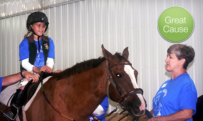 Midwest Therapeutic Riding Program - Paris: $10 Donation to Send Kids with Autism to Camp