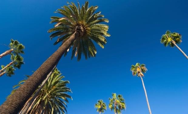 3-Star Top-Secret Hotel Near Disneyland - Anaheim, CA: Stay at 3-Star Top-Secret Hotel Near Disneyland, with Dates into December
