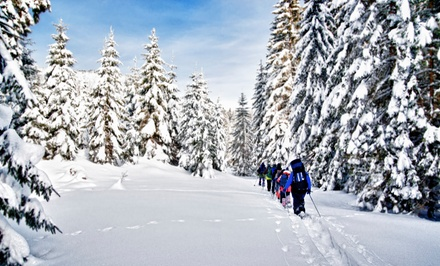 Snowshoes, Waterfalls, and Wine Tour for Two or Four from Summerbound, Inc. (Up to 52% Off)