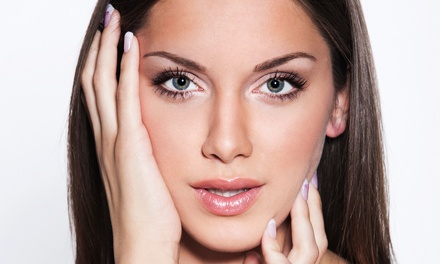 Permanent Upper or Lower Eyeliner or Both or Permanent Makeup for Both Eyebrows at Body Art Salon (Up to 72% Off)