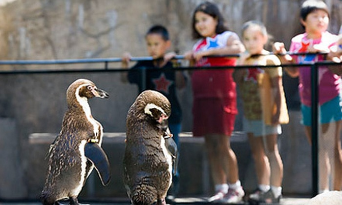 Santa Barbara Zoo - East Beach: Santa Barbara Zoo Visit for Two or Four with Parking (Up to 41% Off)